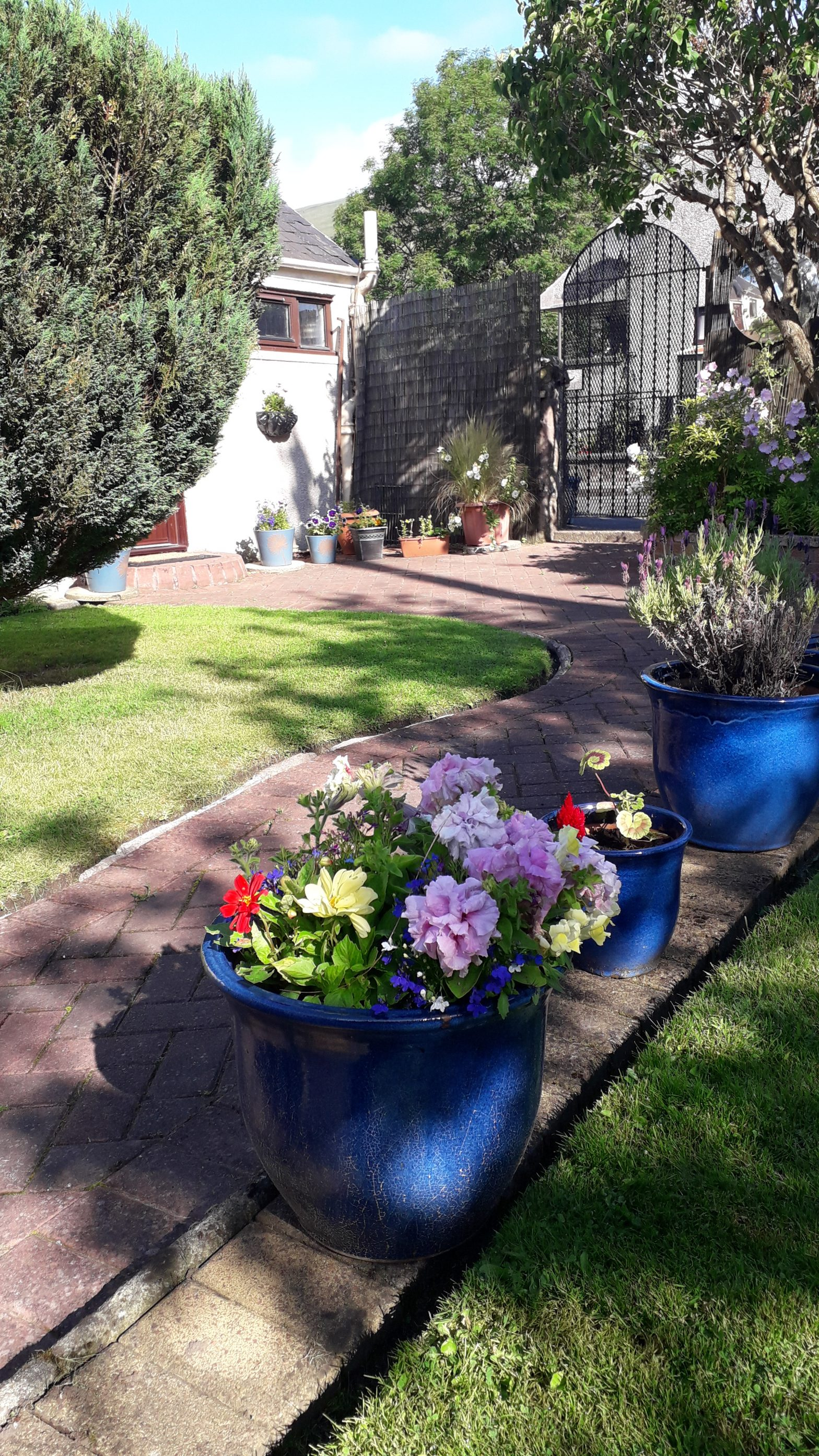 Campbell Cottage's garden | a holiday cottage near Stirling